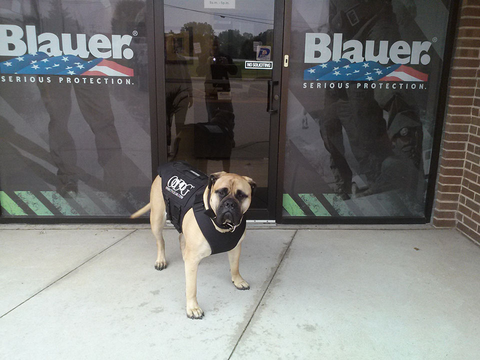 bella in armor express vest at clinton township store